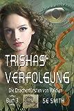 Trishas Verfolgung: Die Drachenfürsten von Valdier Buch 3