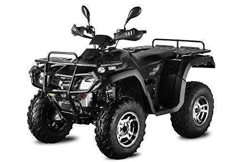 AUFGEBAUT 500cc Hunter 500-SL mit Straßenzulassung 4X4 Seilwinde 4x Federung ATV Bike EEC