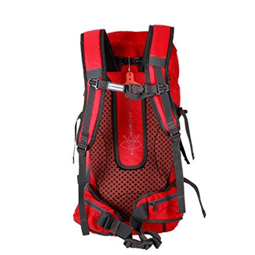 HWLXBB Outdoor Bergsteigen Tasche Männer und Frauen 35L Wasserdichte Mehrzweck-Bergsteigen Tasche Wandern Camping Bergsteigen Freizeit Rucksack Rucksack A