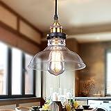Lightess Lámpara Vintage Lámpara Retro Lámpara Industrial Lámpara de Techo Lámpara Colgante Lámpara de Pantalla