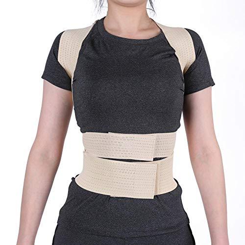 Haltung Korrektor, unsichtbare Unterstützung Gürtel Korsett Taille Schulterstütze Rückenstütze Gürtel für Damen Studenten(M) - Haltung Unterstützung Korrektor