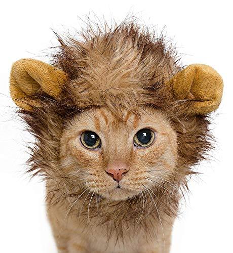 MCdream Löwenmähne Kostüm für Katzen und Hunde, süßes Halloween-Kostüm für Welpen, Katzen, Kätzchen