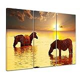 Kunstdruck - Zebras im Wasser - 120x80 cm 3tlg - Bilder als Leinwanddruck - Wandbild von Bilderdepot24 - Tierwelten - Afrika - Wilddpferde - Zebras im Sonnenuntergang