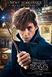 FANTASTIC BEASTS AND WHERE TO FIND THEM – Newt Scamander - US Imported Movie Wall Poster Print - 30CM X 43CM Brand New Harry Potter
