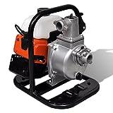 Festnight Benzinbetriebene Wasserpumpe 2 Takt 1,45 kW 0,95 l Benzinwasserpumpe Benzin-Wasserpumpe