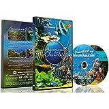 Aquarium DVD - 2 DVD Set Aquariums & Ocean Reefs with Colorful Corals & Fishes