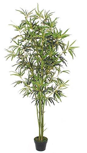 PASAMO 07078 Goldener Bambus, Echtholzstamm, Kunstpflanze 180cm