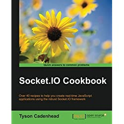 Socket.IO Cookbook (English Edition)