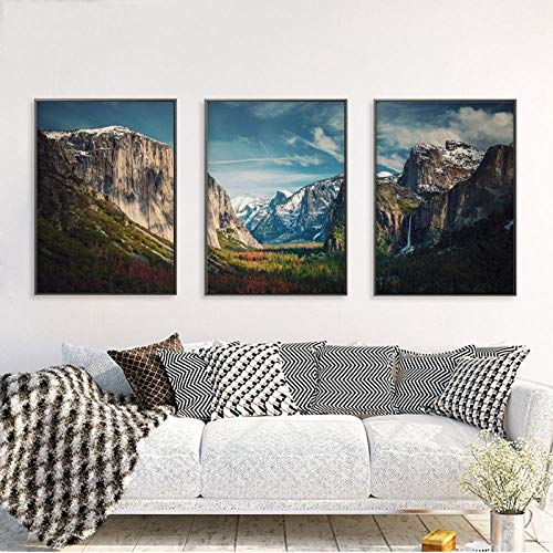 Unbekannt MFMing National Park Forest Poster Drucke Landschaft Wandkunst Leinwand Gemälde Bilder Wohnzimmer Home Wanddekoration-30x40cmx3p kein Rahmen