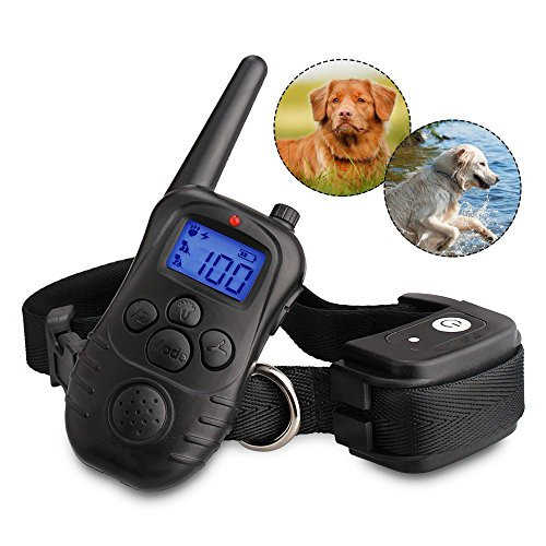 Chuangma Backlight LCD screen with Remote Beep/Vibration/Halsband (Lcd-training)