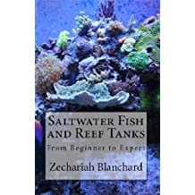 Saltwater Fish and Reef Tanks: From Beginner to Expert (English Edition)