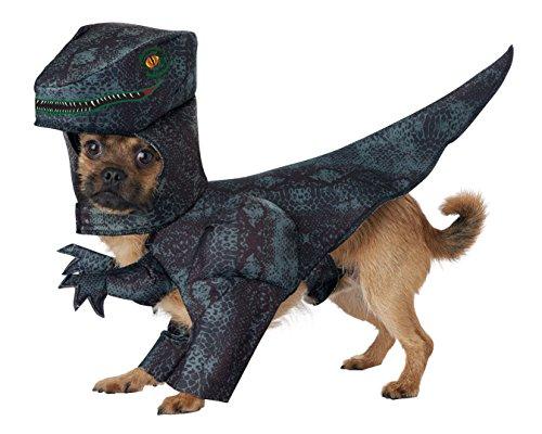 California Costumes Collections PET20169 Hundekostüm Pupasaurus Rex, Größe L (California Costume Collection)