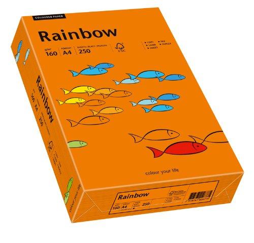 Schneidersöhne 88042461 - Multifunktionspapier Rainbow Coloured Paper A4 160 g/qm, 250 Blatt, intensivorange (Computer-papier Farbig)