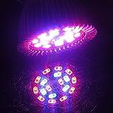 BEBIG Full Spectrum Grow Light 18W LED Grow lamp Bulb for Flower Plant