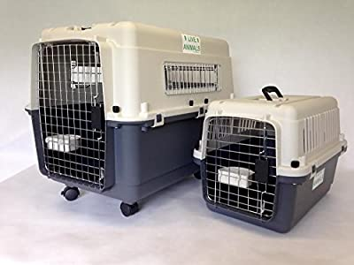 "L100 Luxx Airline Flight Kennel XL 40"" with wheels"