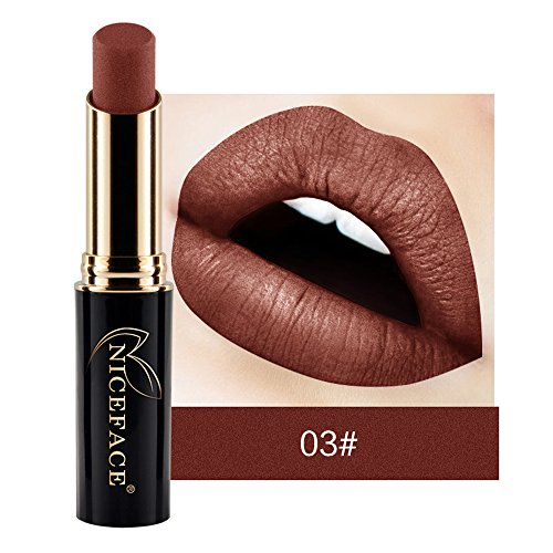 Lippenstift Mit Lipliner,EUZeoFrauen Lippenstift Lip Matte flüssiger Lippenstift wasserdichte Lip Gloss Make up 24 Farben Fashionable Colors Long Lasting Lipsticks (C1)