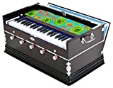 #8: SG Musicals 5 Stopper, Double Bellow, 39 Key, Two Reed, Harmonium With Cover