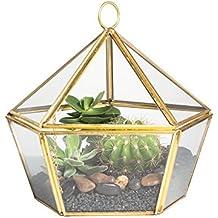 Artístico Moderno Latón Cobre Cristal Transparente jewel-boxed Pentágono Forma terrario macetero caja para musgo verde suculenta aire planta Decor contenedor con tapa basculante dorado