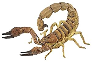 Papo - 50209 - Figurine - Animaux  - Scorpion