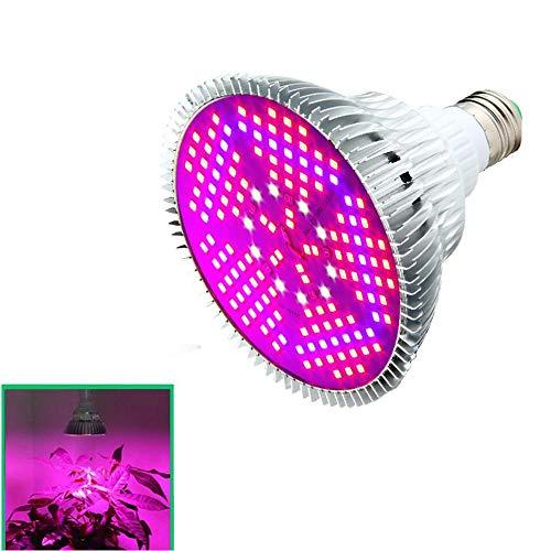 AOLVO Led Pflanzenlampe Vollspektrum, Grow Glühbirne 100 W, Full Spectrum, Lampe für Innen Pflanzen Hydrokultur Gewächshaus Garten-Gemüse und Blume, Trainingsunterlagen für 2835 Chips E27 Base Light
