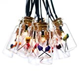 Best Improvements String Lights - cjsolar Set of 15 Glass Jar with Happy Review