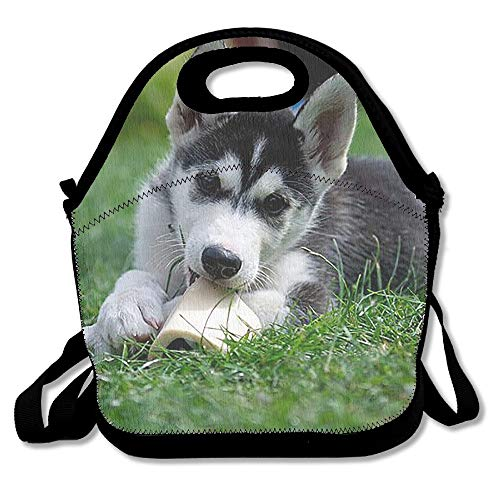 Qian Mu888 Lunch Tote Little Husky Lunch Boxes Lunch Bags Handbag Food Storage Fits for School Travel Work Outdoor