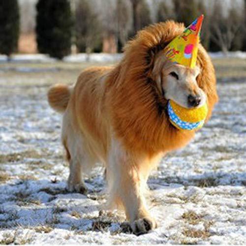 Halloween Dress Up Haustier Hund Kostüm Lion Perücken mit Ohren Haar Haustier Zubehör ()