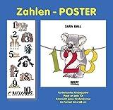 Zahlen-Poster: Vierfarbiges Plakat gefalzt auf Buchformat