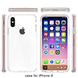 iPhone X Fall, Solide Klar Acryl Backcover Ultra Slim Soft TPU Schutzhülle Bumper Rahmen Hardcase Transparent Acryl Back für Apple iPhone X (Multicolor), Rose