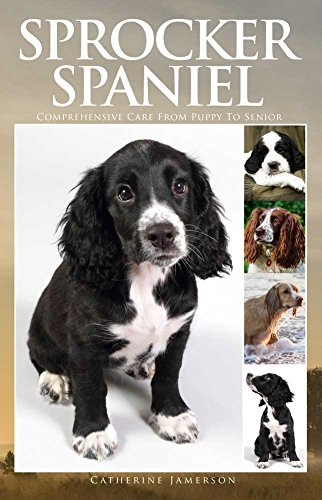 Sprocker Spaniel: Comprehensive Care from Puppy to Senior; Care, Health, Training, Behaviour, Understanding, Grooming, Costs and much more (English Edition) -