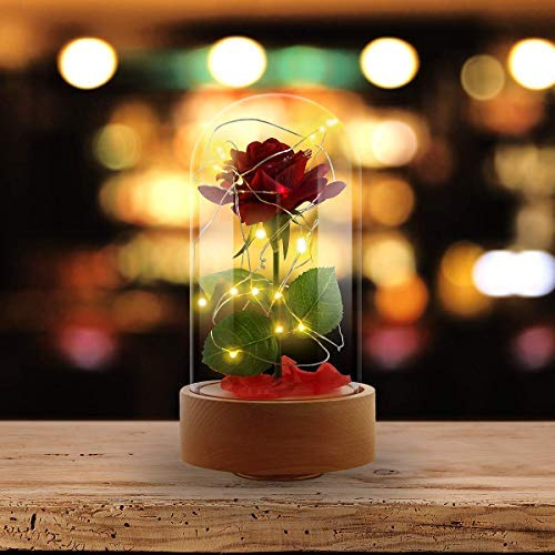 e Beast Rose Kit, Red Rose Flower and LED Light with Fallen Petals in Glass Dome for Home Decor, Christmas Birthday Anniversary Valentine's Day Wedding Gifts for Her ()