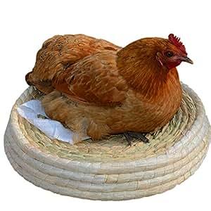 Insun Coussin pour animal domestique pour petits animaux fabriqué à la main tissé Nid d'herbe pour chat Cave