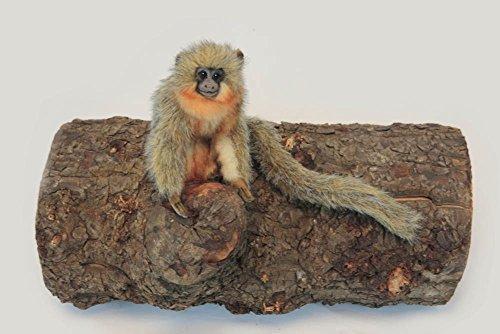 Titi Monkey Plush Soft Toy by Hansa. 16cm. 6230 by Hansa