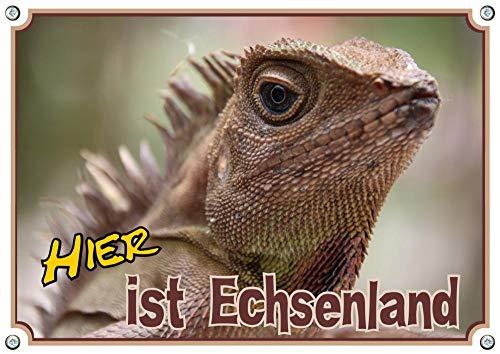 Petsigns Hochwertiges Hinweisschild - Agame - Echse - Terrarium - bis DIN A3, DIN A4