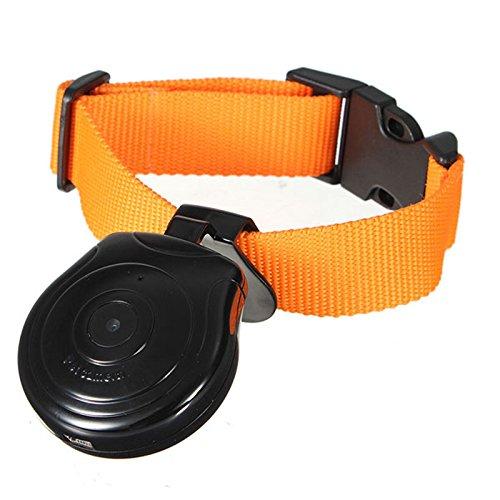 OMOUP Digital Haustier Kragen Kamera Mini Hundehalsband Kamera Videorekorder Kamera DVR Video Recorder fuer Hund Katze Kamera Dvr Digital Recorder Security