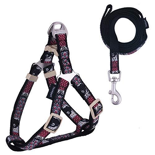 ThinkPet Hundehalsband & Hundeleine im Set - Haustier Halsband aus strapazierfähigem Nylon für kleine Hunde Welpen Walking/Wandern (M, Schwarz Hundegeschirr Leine Set) -