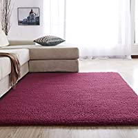 Shaggy Luxury Super Soft Area Rugs 4 cm Pile Thickness Fluffy Plush Carpet for Living Room, Kids Bedroom (200x300 cm, Wine Red)