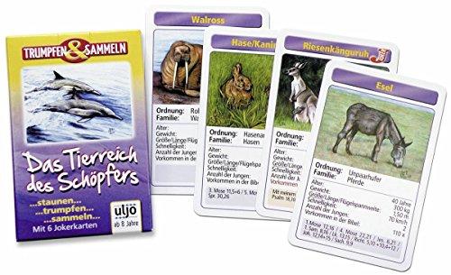MaMeMi Kartenspiel 'Das Tierreich des Schöpfers'