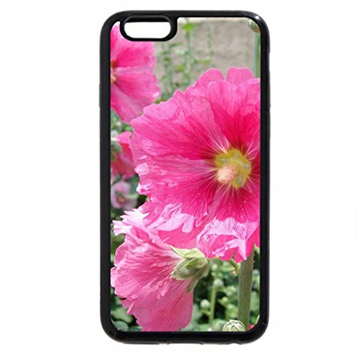 iPhone 6S / iPhone 6 Case (Black) HOLLYHOCKS
