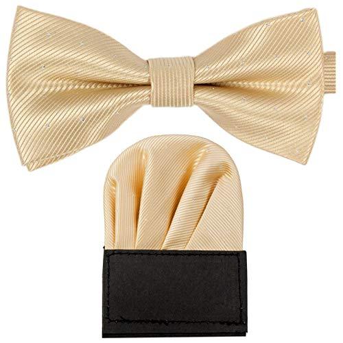 GASSANI 2Tlg Fliegenset, Festliche Beigene Herren-Fliege Silber Gepunktet, Hochzeitsfliege Anzug-Schleife Vor-Gebunden Ein-Stecktuch Vorgefaltet