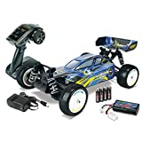 Carson 500404050 - 1:10 X10EB Dirt Warrior Sport 100% RTR
