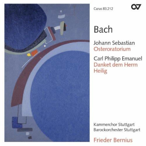 Danket dem Herren, H. 824e: Accompagnato: Du Einziger (Bass)