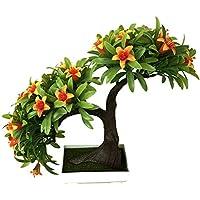 Amazon Fr Pot De Fleur Interieur Ameublement Et Decoration