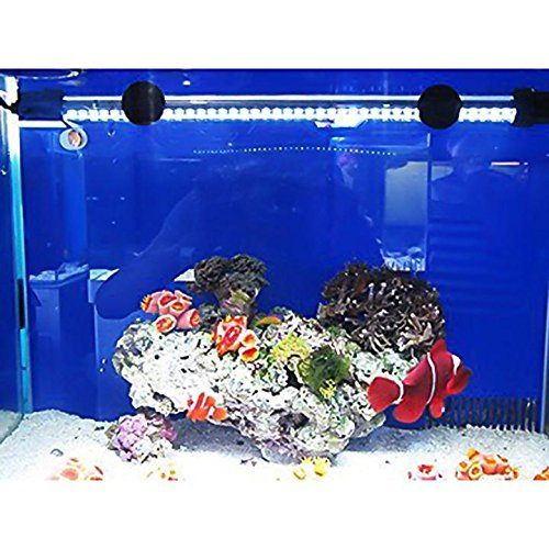 Inspirationen Aquarium Led Beleuchtung Süßwasser 2018: Mingdak LED Aquarium-Licht-Kit Für Aquarium, Unterwasser