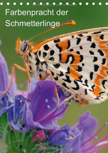 Farbenpracht der Schmetterlinge (Tischkalender 2014 DIN A5 hoch): Die schönsten Schmetterlinge (Tischkalender, 14 Seiten) (CALVENDO Tiere) -