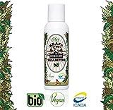 Kastenbein & Bosch Bio Chia Kraftshampoo für starke, gesunde Haare I 100% natürlich, Glycerinfrei, silikonfrei & vegan I Haarpflege Shampoo von , 100ml