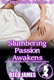 Slumbering Passion Awakens (The Werewolf's Passion 10): (A Harem, Succubus, Witch, Domination Erotica)