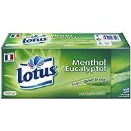Lotus Menthol - Mouchoirs Etuis x 15 Paquets - Lot de 2