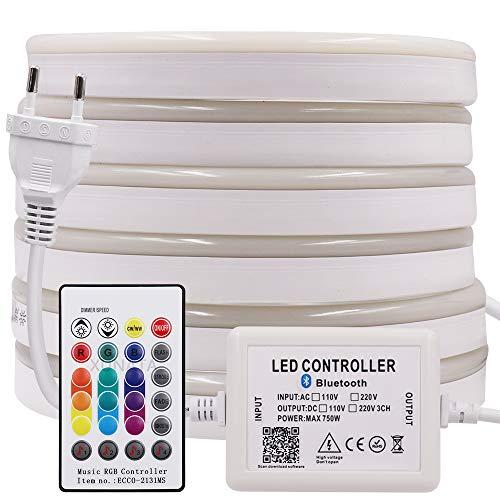 XUNATA Bluetooth LED Neon Streifen, 220V-240V IP65 Wasserdicht RGB 5050 60leds / m Dimmbares Diffusion Flexibles LED Band mit Smart Bluetooth Kontroller+24Tasten Fernbedienung (2M)