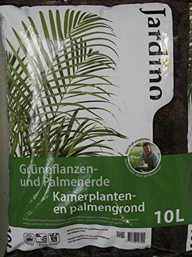 special-potting-soil-for-plants-and-palm-green